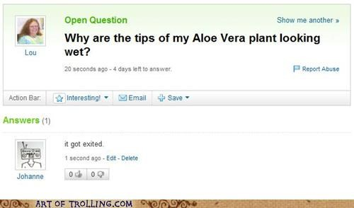 green thumb,plant,that sounds naughty,wet,Yahoo Answer Fails