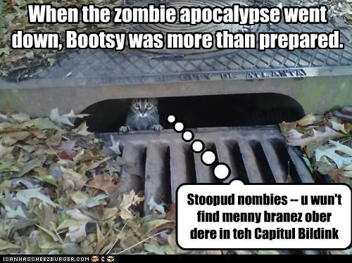 When the zombie apocalypse went down, Bootsy was more than prepared. Stoopud nombies -- u wun't find menny branez ober dere in teh Capitul Bildink