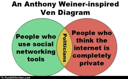 Anthony Weiner internet political pictures politicians