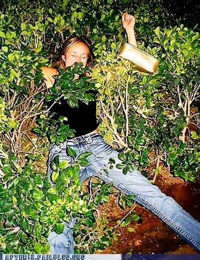 bush,falling down,outside