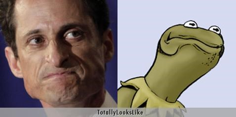 Anthony Weiner,bill nye,kermit the frog,politicians,scandal,Weinergate