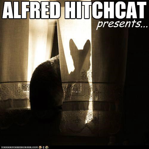 alfred hitchock black and white caption captioned cat drama feature Movie noir presenting presents suspense suspenseful - 4843295232
