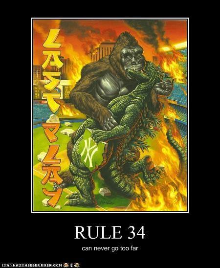 RULE 34 can never go too far