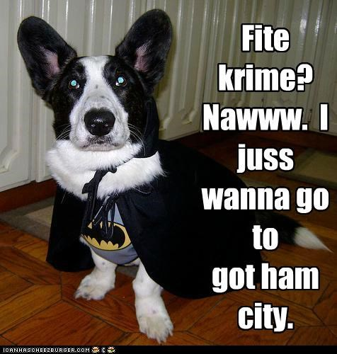 batman,corgi,costume,food,ham