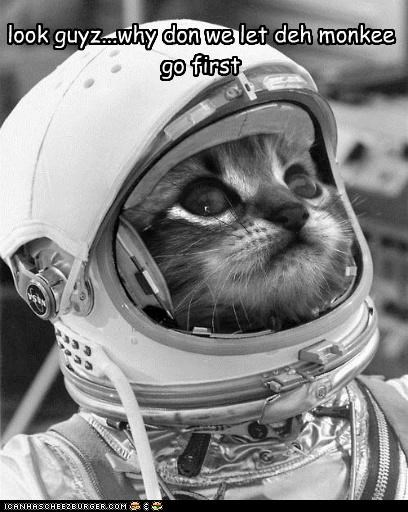 astronaut caption captioned cat first go let monkey space suit suggestion - 4844496896