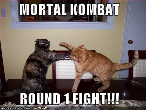 MORTAL KOMBAT ROUND 1 FIGHT!!! - Cheezburger - Funny Memes