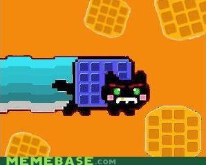 blue waffle,its a trap,Nyan Cat,search,tac nayn,waffle