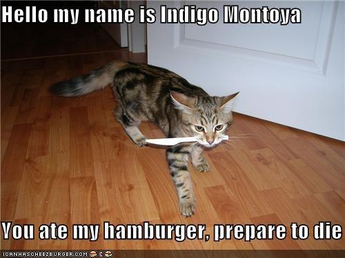 Cheezburger Image 4845085952