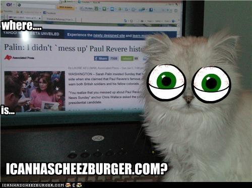 Cheezburger Image 4845634304