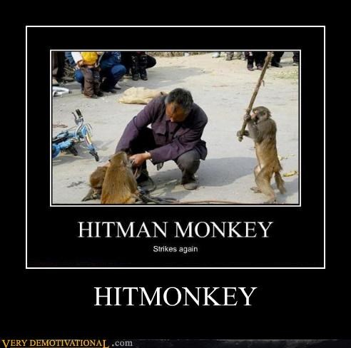 awesome,hitman,monkey,Pure Awesome,scary