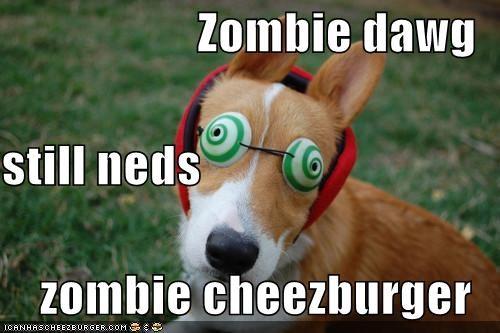 Cheezburger Image 4846728704