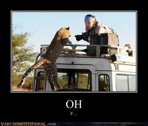 camera men,car,leopard,scary,Terrifying