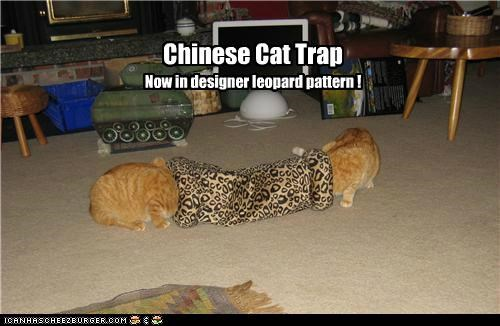 Chinese Cat Trap Now in designer leopard pattern !