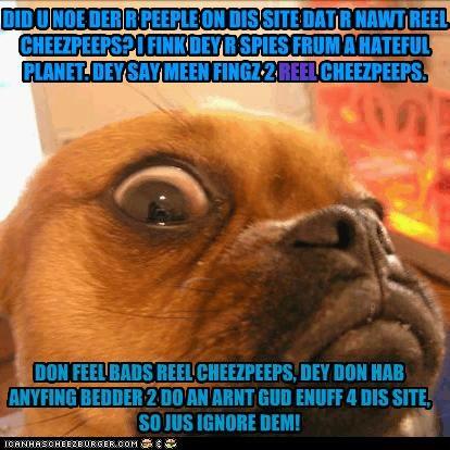 Cheezburger Image 4849292032