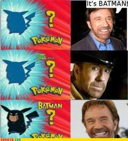 batman,celebutard,chuck norris,Pokémon