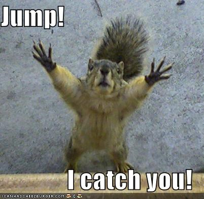 Jump! I catch you! - Cheezburger - Funny Memes | Funny Pictures