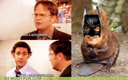 batman,beaver,dwight,explanation,jim,justice,justin bieber,misunderstanding,question,show,similar sounding,television,the office,TV