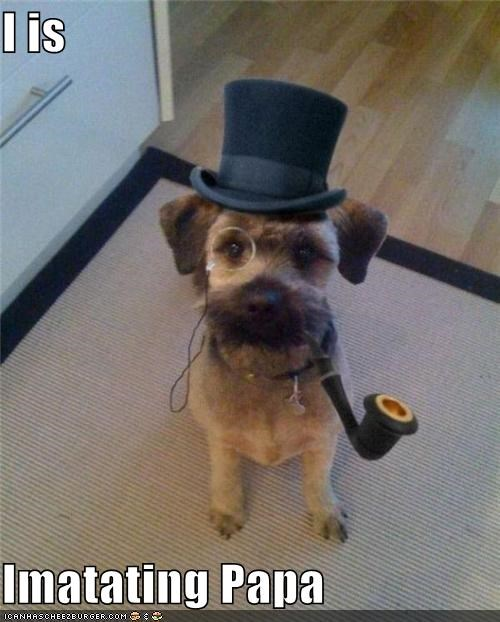 dad,human,imitating,imitation,mixed breed,monocle pipe,papa,scottish terrier,top hat