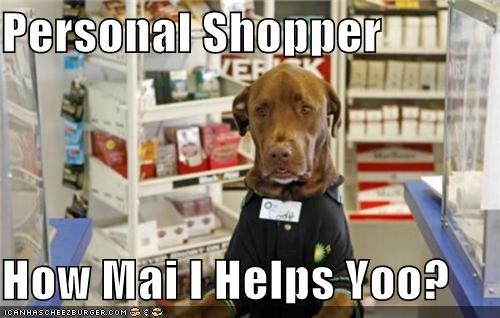 great dane help helping personal question shopper shopping