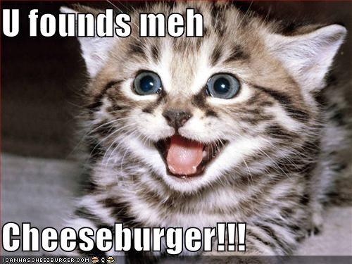Cheezburger Image 4851001088