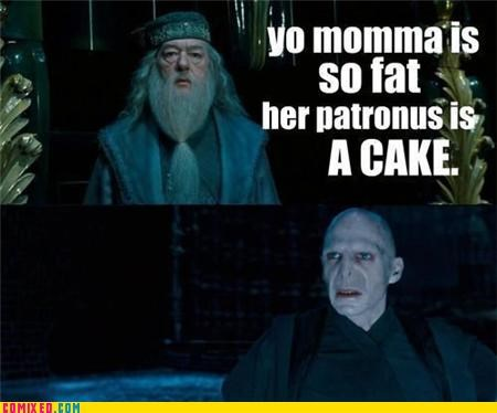dumbledore,Harry Potter,voldemort,yo momma