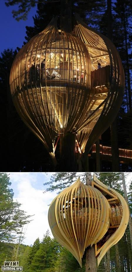 design,treehouse,trees