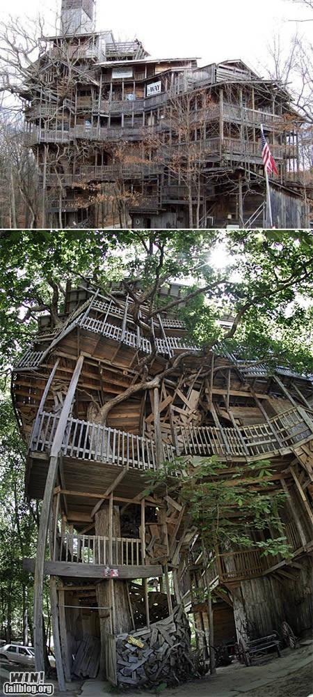 awesome deisgn giant house nature treehouse trees - 4853573888