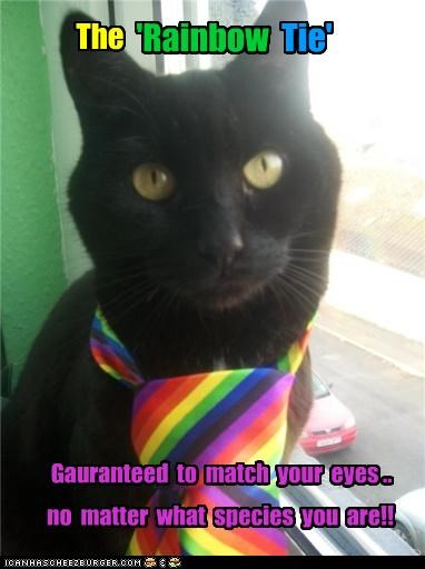 The no matter what species you are!! 'Rainbow Tie' Gauranteed to match your eyes ..