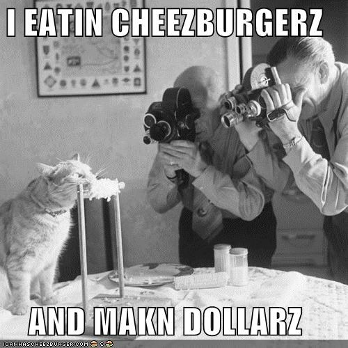 Cheezburger Image 4856719872