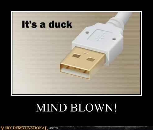 duck,Hall of Fame,hilarious,look a like,USB