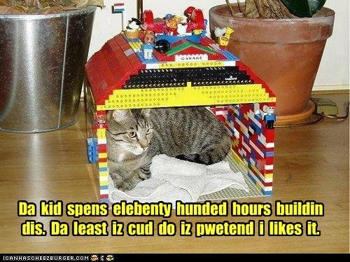 appreciation building caption captioned cat elebenty hours house hundred kid lego like pretending spends - 4860260352