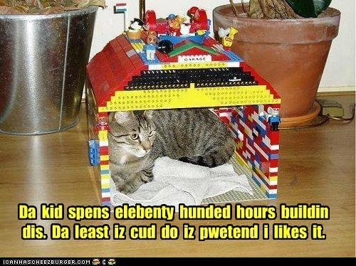 appreciation building caption captioned cat elebenty hours house hundred kid lego like pretending spends - 4860260352