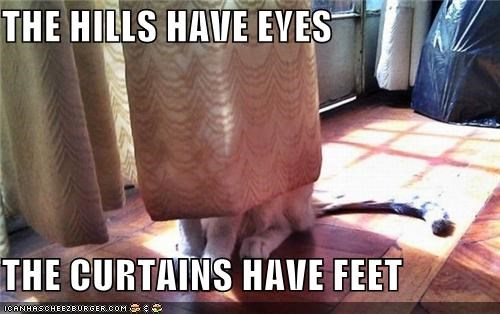 caption,captioned,cat,curtains,eyes,feet,have,hills,Movie,the hills have eyes,title