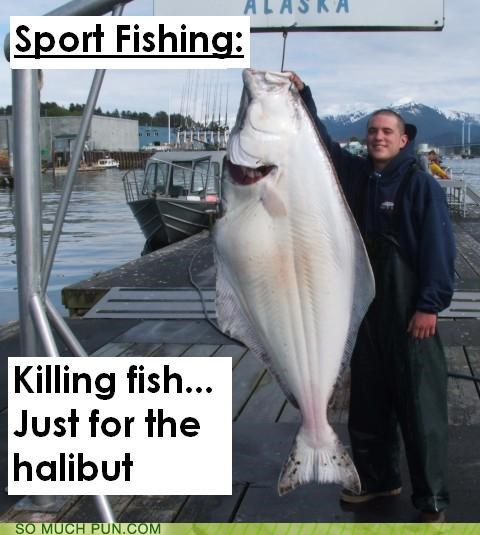 fishing for halibut hell hell of it it killing of punchline similar sounding sport