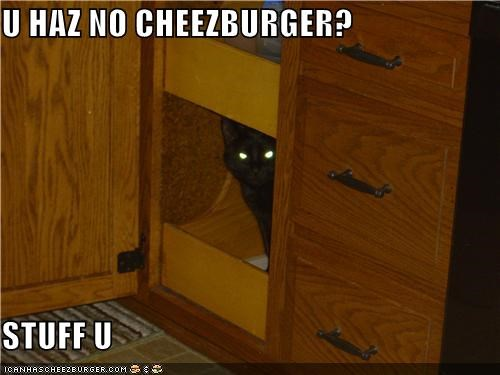 Cheezburger Image 4861393920