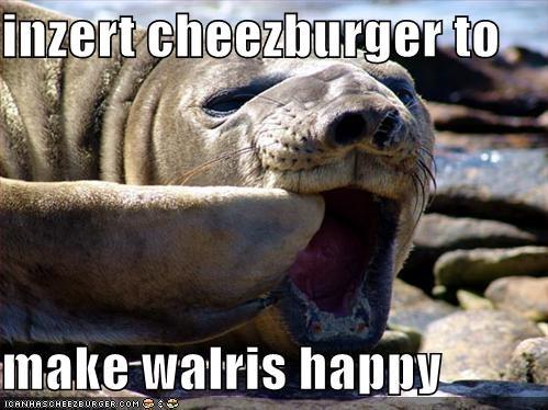 Cheezburger Image 4861596672