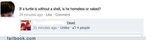 homeless turtle - 4862964992