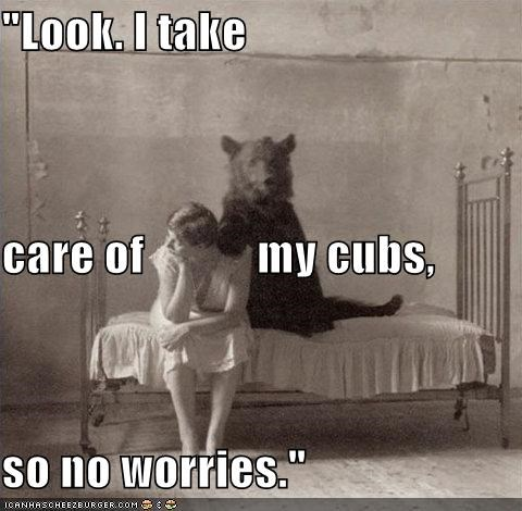 animal bear funny Photo - 4863130112