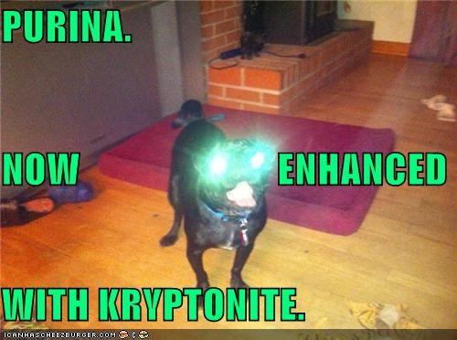 comic,enhanced,eyes,glowing,kryptonite,mixed breed,now,pug,purina,superman,with