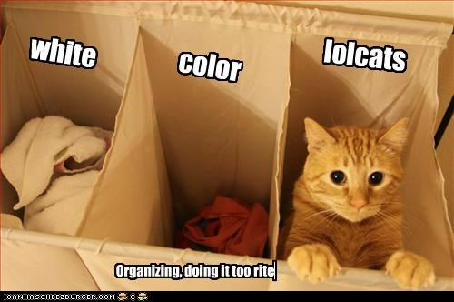 lolcats color white Organizing, doing it too rite