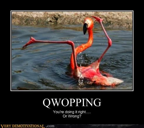 animals Awkward flamingo hilarious QWOP right wrong - 4863588096