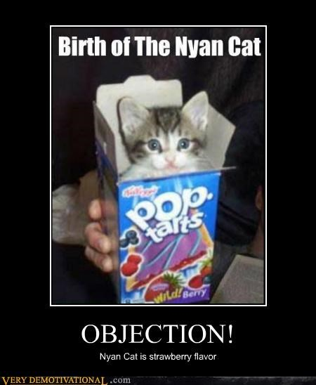 cat hilarious nyan pop tart strawberry - 4864076032