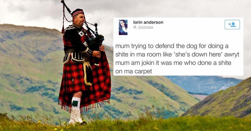 Funny gems from scottish twitter, scotland memes.