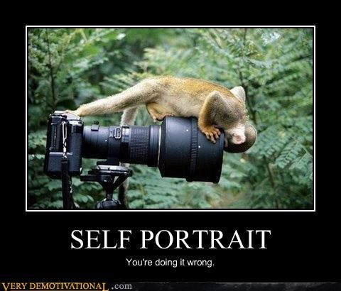 animals camera hilarious monkey self portrait wtf - 4865347072