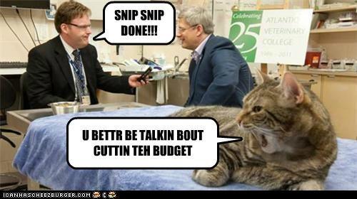SNIP SNIP DONE!!! U BETTR BE TALKIN BOUT CUTTIN TEH BUDGET