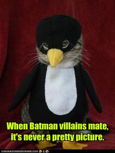 batman,caption,captioned,cat,catwoman,costume,mate,never,penguin,picture,pretty,The Penguin,villains,when