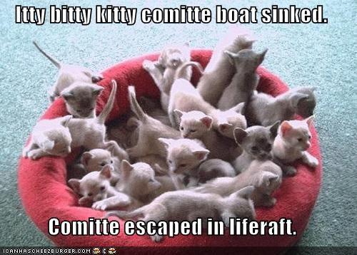 beds boats itteh bitteh kitteh committeh kitten lolcats lolkittehs rafts - 486566656
