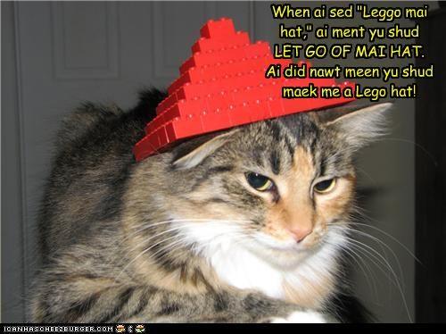 Cheezburger Image 4865864192