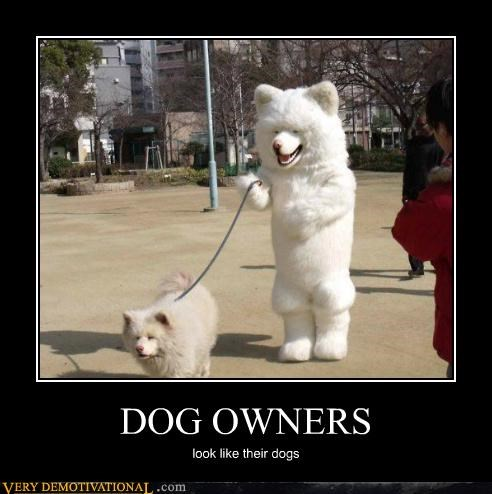 DOG OWNERS look like their dogs