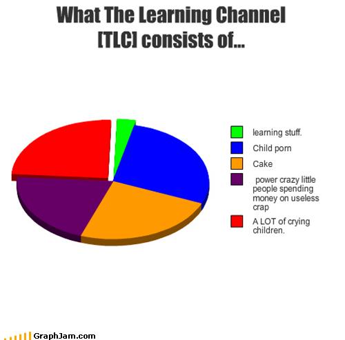 cable Pie Chart shows television tlc